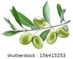 branch of olive tree with green ... | Shutterstock . vector #156415253