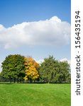 autumn trees on a green meadow against the sky - stock photo