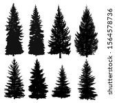 set of silhouettes of pine... | Shutterstock .eps vector #1564578736