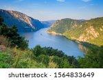 Danube River Summer Landscape. ...
