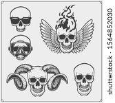 vector set of skulls. tattoo ... | Shutterstock .eps vector #1564852030