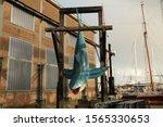 Life Size Plastic Blue Shark