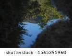 The reflection of a mountain hill and trees in a puddle in a triangle shape, upside down, autumn, Rhodope mountains, Bulgaria, 50 mm Nikon