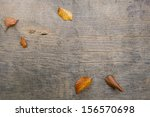 Background Autumn Leaves On A...