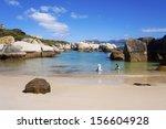 boulders beach  south africa  ... | Shutterstock . vector #156604928
