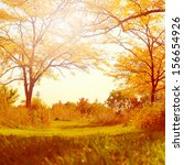 autumn scene in the forest | Shutterstock . vector #156654926