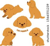 toy poodle flat colored set   Shutterstock .eps vector #1566551239