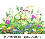 floral composition made with... | Shutterstock .eps vector #1567003549