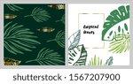 trendy summer tropical leaves... | Shutterstock .eps vector #1567207900