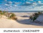 Coastal Background Of Sand ...