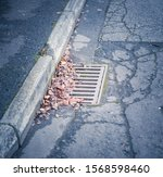 Fall Leaves Clogging A Drain In ...