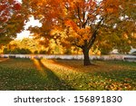 beautiful autumn landscape of... | Shutterstock . vector #156891830
