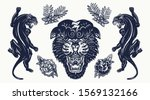 black panthers. aggressive wild ... | Shutterstock .eps vector #1569132166