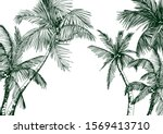 Tropical Card With Green Palm...