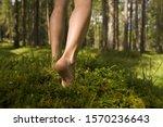 Barefoot Woman Walking In Forest