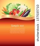 vegetables dark background with ...   Shutterstock .eps vector #157035710