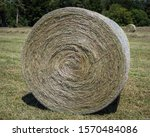Hay Is Grass  Legumes  Or Othe...