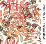 Rowan Leaves In Watercolor