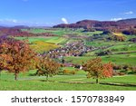 Autumn landscape, in front cherry trees in autumn colors, Wintersingen, Canton of Basel-Landschaft, Switzerland