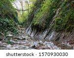 gorge near lazarevskoye... | Shutterstock . vector #1570930030