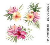 beautiful tropical exotic... | Shutterstock . vector #1570965019
