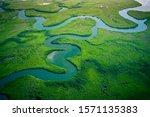 Gambia Mangroves. Aerial View...