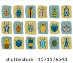vector set of insects.... | Shutterstock .eps vector #1571176543