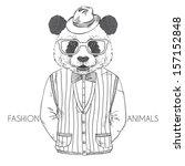 hand drawn vector fashion... | Shutterstock .eps vector #157152848
