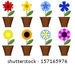 flowers in the pots  set . | Shutterstock . vector #157165976