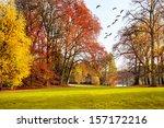 autumn landscape. park in...   Shutterstock . vector #157172216