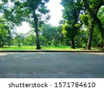 empty road with tree on grass... | Shutterstock . vector #1571784610
