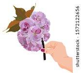 sakura branch in woman hand ... | Shutterstock .eps vector #1572122656