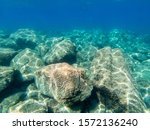 Underwater Beauty  Clean Water...