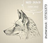 Fox Portrait. Hand Drawn Vector ...