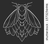 butterfly sketch. detailed... | Shutterstock .eps vector #1573256446