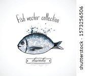 hand drawn set watercolor ink ...   Shutterstock .eps vector #1573256506