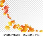 maple leaves vector  autumn... | Shutterstock .eps vector #1573358443