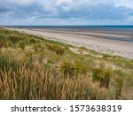 Dunes Covered With Marram Gras...