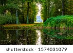 Forest Autumn Pond Water View....