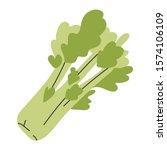 green celery leaves  vegetable  ...   Shutterstock .eps vector #1574106109