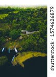 Amazon River Drone Shot  Morning