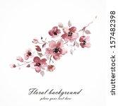 Cherry Blossom. Sakura Flowers...