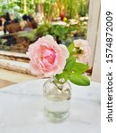 Small Flowers In A Glass Jar On ...