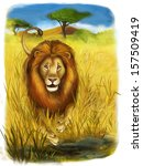 safari   lion   illustration... | Shutterstock . vector #157509419