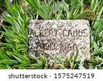 Grave Of Albert Camus In...