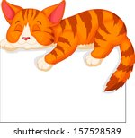 Stock vector cute cat sleeping 157528589