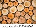 Sawn Beige Wooden Logs On The...