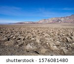 Ash Meadow And Desert Scenery...