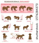 dog fearful behavior icons set. ... | Shutterstock .eps vector #1576284373