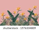 tropical green palm banana... | Shutterstock .eps vector #1576334809